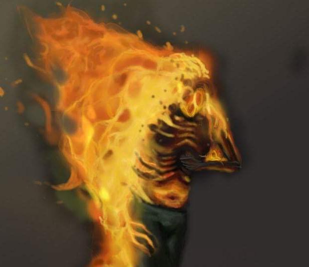 """""""Świat płonie – nie czas na spory"""""""